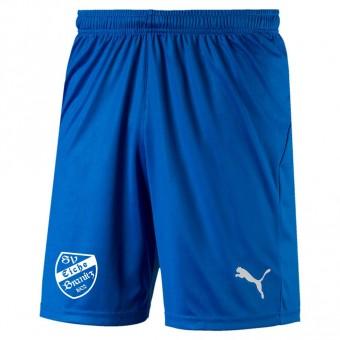 PUMA SV Eiche Branitz LIGA Shorts Core mit Innenslip Electric Blue Lemonade-White | S