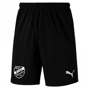 PUMA SV Eiche Branitz LIGA Training Shorts Core Puma Black-Puma White | S