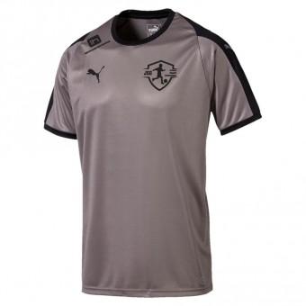 Puma JSG Drebkau-Kausche-Leuthen LIGA Jersey Trikot Steel Gray-Puma Black | M